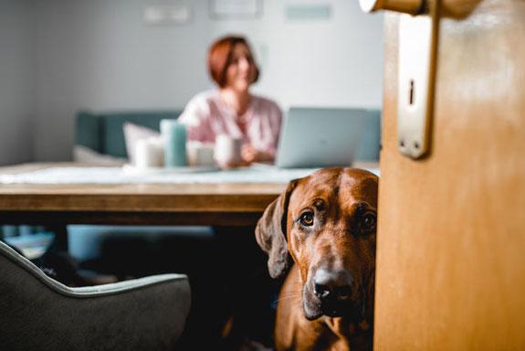 Fotografin Eva Wegerle mit Hund